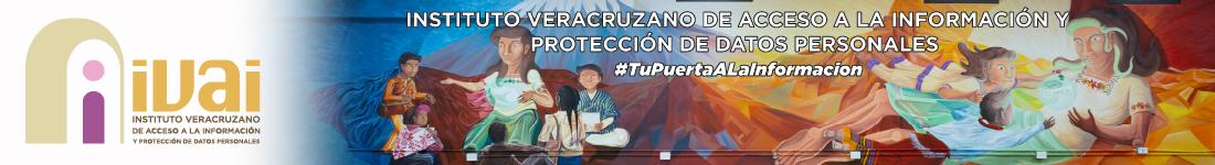 Instituto Veracruzano de Acceso a la Información y Protección de Datos Personales